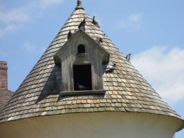 Tryon Palace Pigeon Coop by DreamsCanComeTrue67