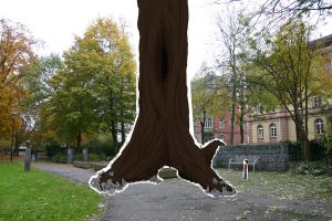 The Biggest Tree by Vicipedia