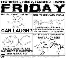 FFFFFriday Ep. 3 - Rat Laughter by ProudPastry