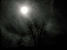 Night Sky 2 by HauntingVisionsStock
