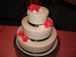 Wedding cake 128 by ninny85310
