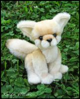Fennec Fox - supposedly by deeed