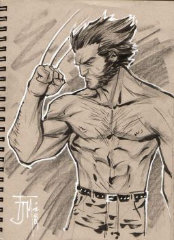 Drink and Draw Wolverine by manapul