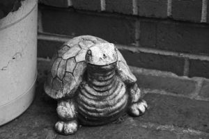 T to the Urtle by MakersMischief
