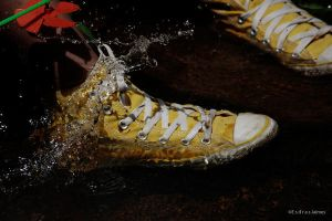 CONVERSE IN THE WATER by Umlo-portfolio