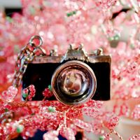 camera toy. by a-place4my-head
