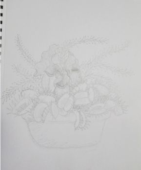 WIP Carnivorous Plant Arrangement by PyroMorticia