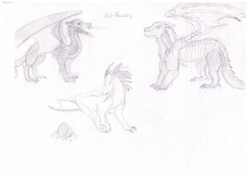 Sketches of the dragons of Pyrriha by ChibiMousey