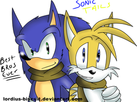 Boom: Sonic and Tails by Lordius-Biscuit