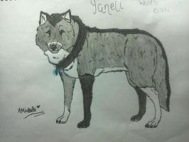 Yaneli realistic wolf drawed by me! by WolfWhisperer4Life
