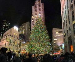 Rockefeller Center Tree 2 by Lorddarphyve
