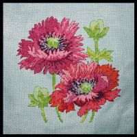 Pretty Poppies by KezzaLN