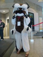 Appa - Animethon 15 by Blind-Fox