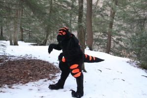 arkeen the timber raptor 2 by Rathkin