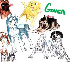 Ginga character sketches by Gingastar18