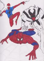 Spidey Trio by Algelis