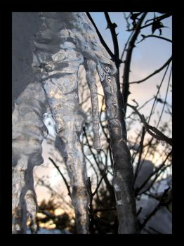 Icicle 2 by Elephtheruid