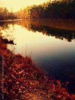 Autumnia by PixiePoxPhotography