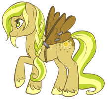 Sun Dapple, Ready to Fly! by Noxx-ious