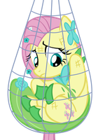 Fluttershy Caught in a Net by supermatt314