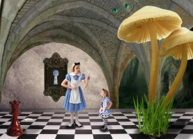 Alice In Wonderland by Fairling