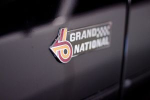Grand National by Doogle510