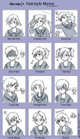 APH: Norway Hairstyle meme by carichan