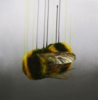 Hanging by a Thread by LouiseMcNaught