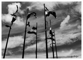 The flying flags by Nattyw
