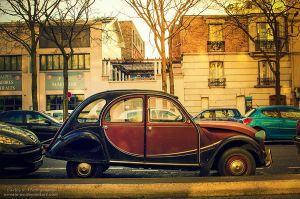 Citroen 2CV by oO-Rein-Oo