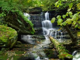 Ricketts Glen State Park 70 by Dracoart-Stock
