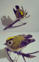 Felted goldcrest by Amadare90