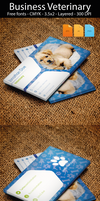 Business Card Veterinary by artgh