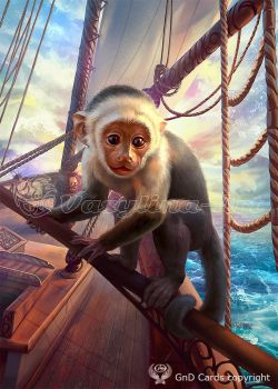Monkey by Vasylina