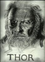 Odin from Thor Portrait by jiehng