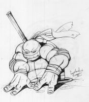 Donnie 2006 Comic Con by Ninja-Turtles