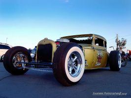Hogie Shine Coupe by Swanee3
