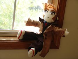 Sunny Doctor?  Tennant Plushie by siriusrain