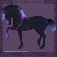 Joker Nordanner Import #063 by DemiWolfe-Stables