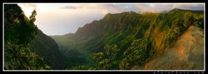 Kalalau Overlook by aFeinPhoto-com