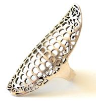Silver Floral Caged Ring by AknieGirl