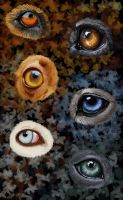 Eyes Speed Painting by Maranez