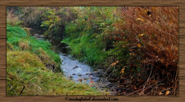 little creek in the wilds... by MadeOfSteel