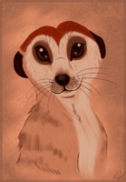 Timon Speedpaint by thetelltaleheart