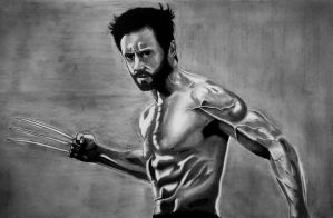 Wolverine Sketch by Rolopopo