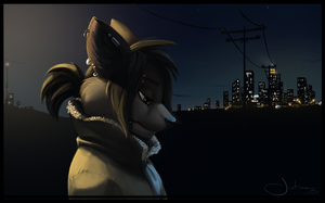 City Lights (redone) by Zoulouluvu