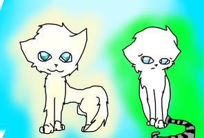 My cats by Flare88