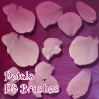 Petals Brushes by pswonderland2