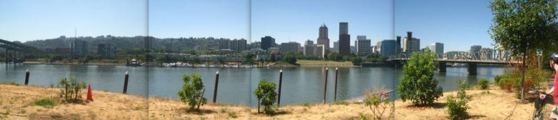Willamette Pan 2 with Downtown by co1dpaws