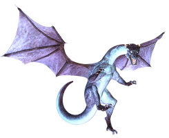 Whoa Bright Dragon Freebie by CelticStrm-Stock by CelticStrm-Stock